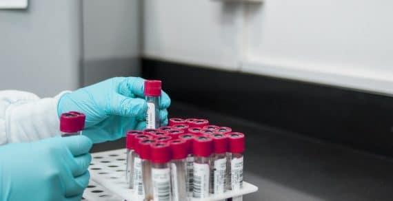 La vérité par ADN: Quand la science répond d'une manière rapide et sans équivoque
